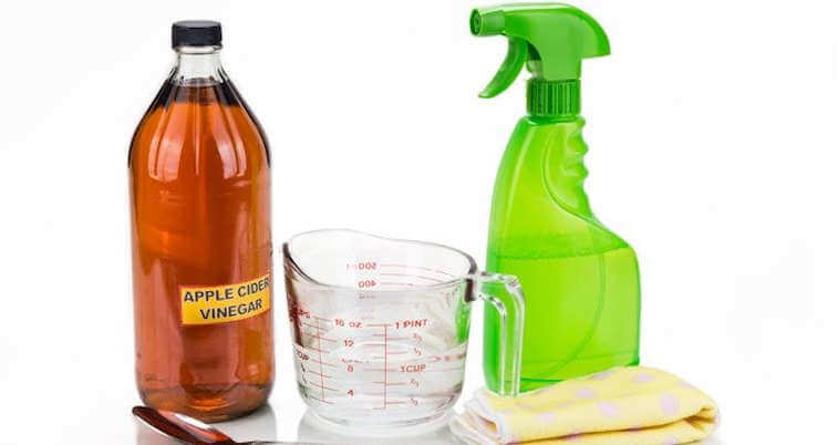 Vinegar-and-Oil-insecticide