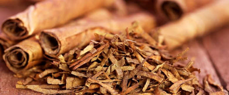 tobacco as insecticide