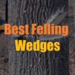 10 Best Felling Wedges for 2021 (Reviews & Guide)