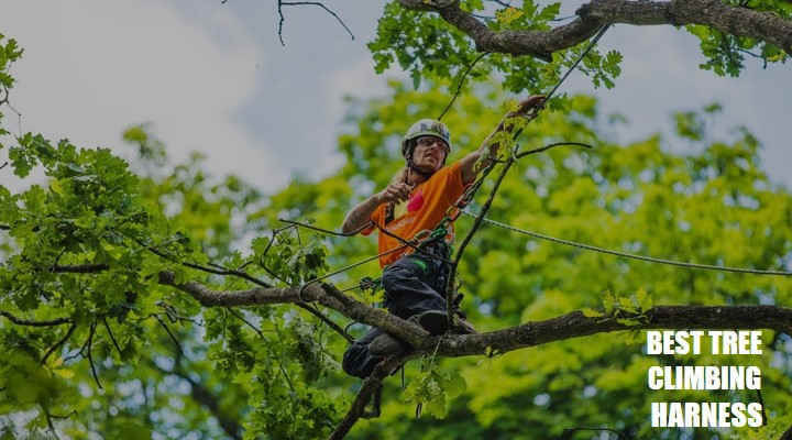 7 Best Tree Climbing Harness and Saddle for 2021