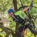 7 Best Rope for Tree Climbing in 2021 (Top Pick & Reviews)
